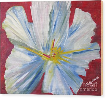 Single White Flower Wood Print by Judy Morris