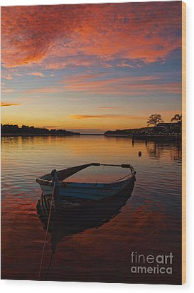 Wood Print featuring the photograph Sinking by Trena Mara