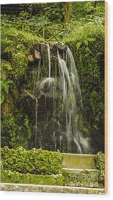 Sintra Waterfall Wood Print by Deborah Smolinske