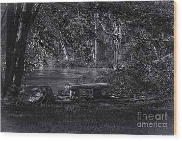 Wood Print featuring the photograph Sit And Ponder by Mark Myhaver