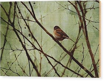 Sittin' In A Tree Wood Print by Rebecca Cozart