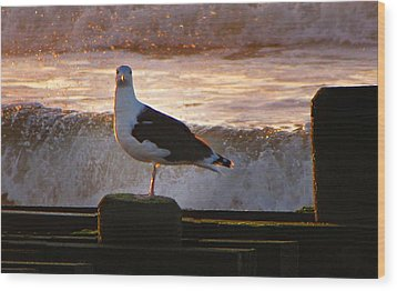 Sittin On The Dock Of The Bay Wood Print by David Dehner