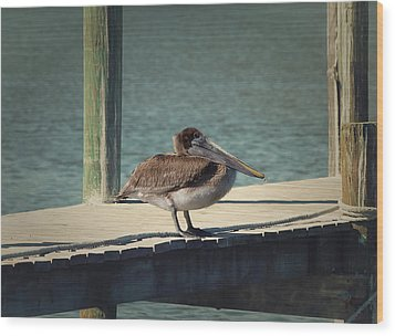 Sitting On The Dock Of The Bay Wood Print by Kim Hojnacki