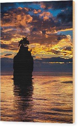 Siwash Rock Silhouette Wood Print by Alexis Birkill