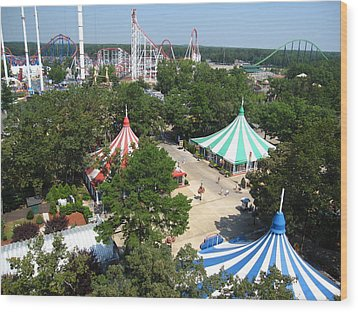 Six Flags Great Adventure - 121210 Wood Print by DC Photographer