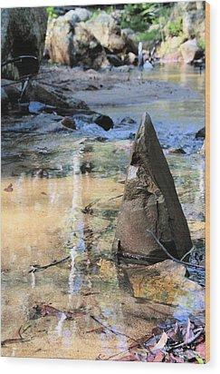 Six Mile Creek Wood Print by David Rich