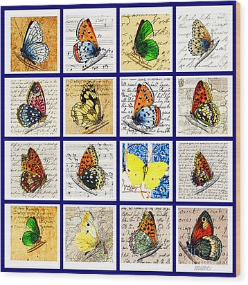 Sixteen Butterflies Wood Print by Marian Cates