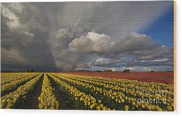 Skagit Valley Storm Wood Print by Mike Reid