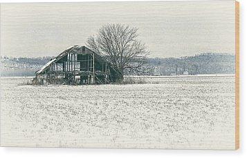 Skeleton Barn Wood Print by Wayne Meyer