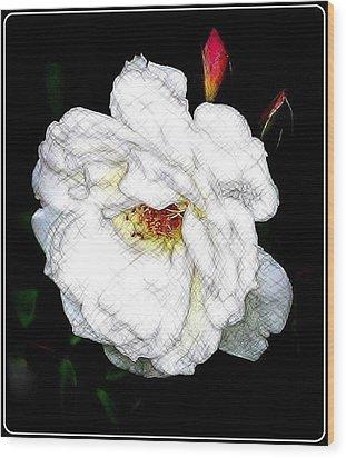 Sketch A Rose Wood Print