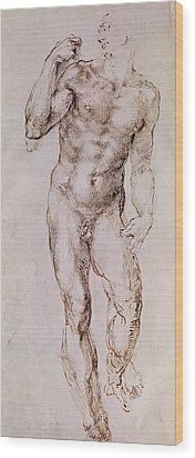 Sketch Of David With His Sling Wood Print by Michelangelo Buonarroti