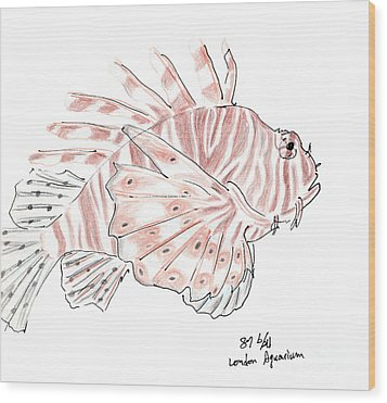Wood Print featuring the drawing Sketch Of Lion Fish At London Aquarium by Jingfen Hwu
