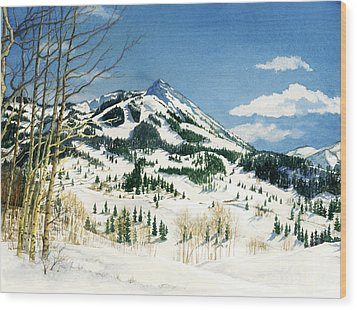 Skiers Paradise Wood Print by Barbara Jewell