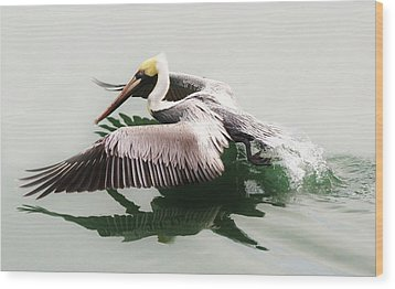 Skimming Across The Water Wood Print by Paulette Thomas