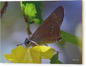 Wood Print featuring the photograph Skipper Butterfly by Debra Martz