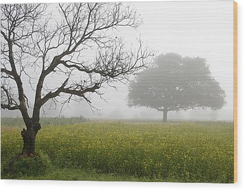Skc 0058 Contrasty Trees Wood Print by Sunil Kapadia