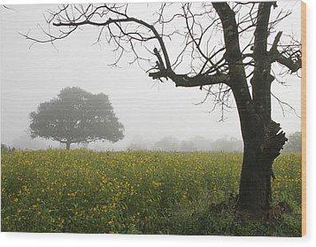 Skc 0060 Framed Tree Wood Print by Sunil Kapadia