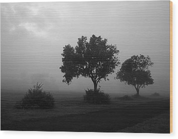 Skc 0074 A Family Of Trees Wood Print by Sunil Kapadia