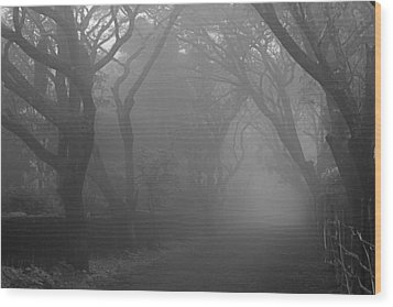 Skc 0077 A Romatic Path Wood Print by Sunil Kapadia