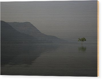 Skc 0086 Solitary Isolation Wood Print by Sunil Kapadia