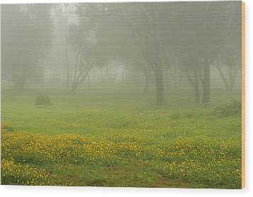 Skc 0835 Romance In The Meadows Wood Print by Sunil Kapadia