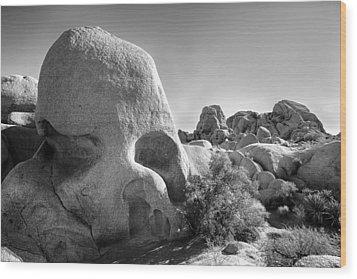 Skull Rock Wood Print by Peter Tellone