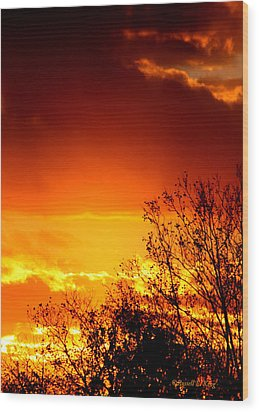 Sky Ablaze Wood Print by Russell  King