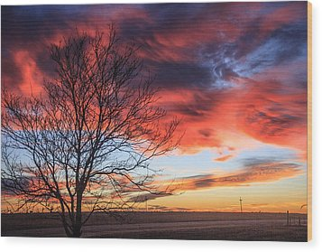 Sky Ablaze Wood Print by Shirley Heier