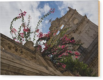 Wood Print featuring the photograph Sky Blossoms by Georgia Mizuleva