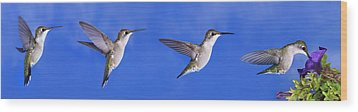 Sky Blue Flyers Collage Wood Print