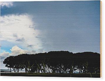 Sky Half Full Wood Print