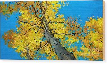 Sky High 3 Wood Print by Gary Kim
