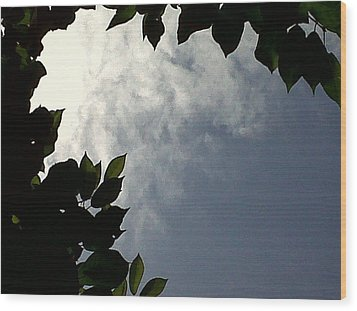 Sky Is The Limit Wood Print by Andreea Alecu