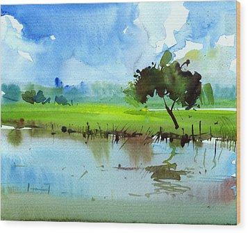 Sky N Farmland Wood Print by Anil Nene