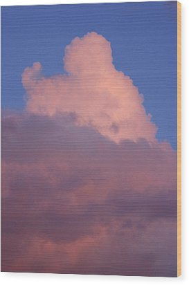 Wood Print featuring the photograph Sky Song 2 by Laurie Stewart