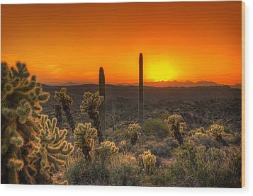 Skyfire Cholla Wood Print