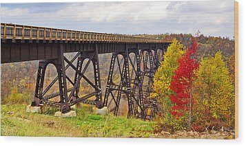 Skywalk Kinzua Bridge State Park Mckean County Pennsylvania Wood Print by A Gurmankin