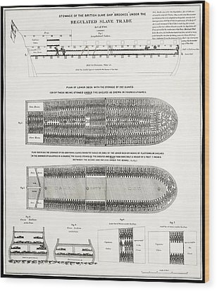 Slave Ship Middle Passage Stowage Diagram  1788 Wood Print by Daniel Hagerman