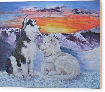 Sled Dog Dreams Wood Print by Karen  Peterson