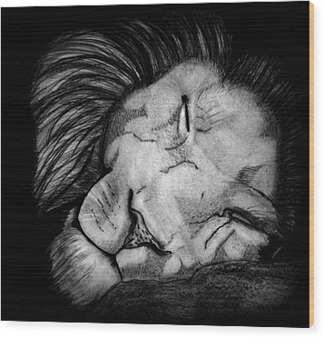 Sleeping Lion Wood Print by Saki Art