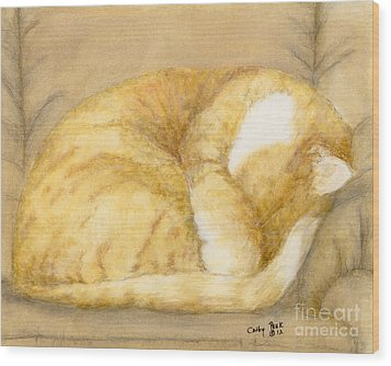 Sleeping Orange Tabby Cat Feline Animal Art Pets Wood Print by Cathy Peek