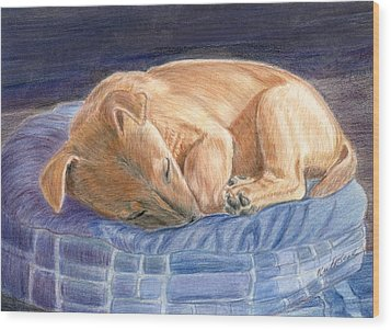 Sleeping Puppy Wood Print