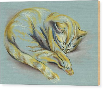 Wood Print featuring the pastel Sleeping Tabby Kitten by MM Anderson