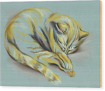 Sleeping Tabby Kitten Wood Print by MM Anderson