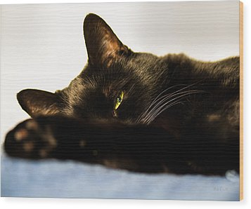 Sleeping With One Eye Open Wood Print by Bob Orsillo
