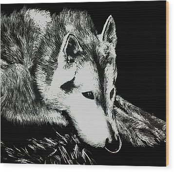 Sleeping Wolf Wood Print by Shabnam Nassir