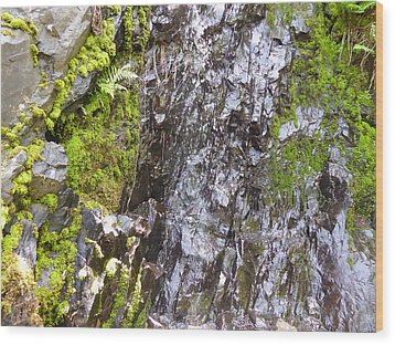 Wood Print featuring the photograph Slick Rock by Laurie Tsemak