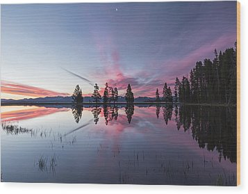 Slide Into The Day Wood Print by Jon Glaser