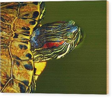 Slider Wood Print