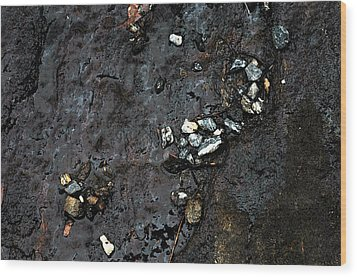 Wood Print featuring the photograph Slippery Rock  by Allen Carroll